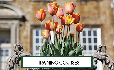 London Academy for Household Staff Training Courses